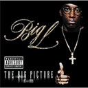 Big L - The big picture 1974-1999