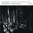 Alexander Lonquich / Carolin Widmann / Franz Schubert - Franz schubert: fantasie c-dur / rondo h-moll / sonate a-dur