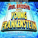 Andréa Martin / Christopher Fitzgerald / Company / Ensemble / Fred Applegate / Male Ensemble / Megan Mullally / Roger Bart / Shuler Hensley / Sutton Foster - Young frankenstein / ost
