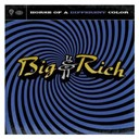 Big &amp; Rich - Horse of a different color