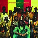 Tiken Jah Fakoly - L'africain