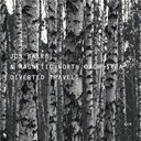 Jon Balke / Magnetic North Orchestra - Diverted travels