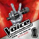 Compilation - The Voice : La Plus Belle Voix - Prime Du 7 Avril