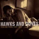 Doves / Hawks - Year one