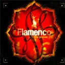 Music Brokers - Flamenco new grooves