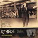 Roberto Goyeneche - Che bandone&oacute;n