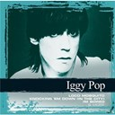 Iggy Pop - Collections