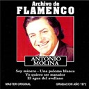 Antonio Molina - Archivo de flamenco vol.12 (antonio molina)