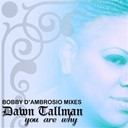 Dawn Tallman - You are why (bobby d'ambrosio mixes)