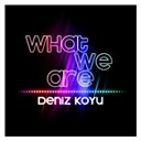 Deniz Koyu - What we are