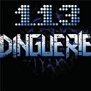 113 - Dinguerie