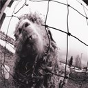 Pearl Jam - Vs. expanded edition (3 bonus tracks)