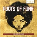 James Brown / Little Richard - Roots of funk, vol. 2 (the godfather(s))