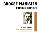 Vladimir Horowitz - Grosse pianisten - vladimir horowitz