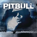Pitbull - I am armando (armando reloaded)