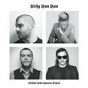 Birdy Nam Nam - Defiant order (remixes project)