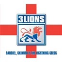 Baddiel / Skinner / The Lightning Seeds - Football's coming home - three lions