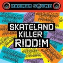 Alborosie / Tarrus Riley - Skateland killer riddim