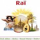 Abdou / Amine Titi / Bilal / Chaba Faiza / Cheb Abbes / Cheb Fayçal / Cheb Fouzi / Cheb Khalass / Cheba Danet / Cheba Djenet / Cheba Faïza / Cheba Kheira / Dj Zahir / Djeloul / Djloul / Faouzi / Ghazi / Hasni Seghir / Hasni Sghir / Houari Manar / Houari Mazouzi / Kadirou / Naoufel / Rochdi - Raï (double album 34 titles)