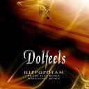 Dolfeels - Hippopotam (remix)