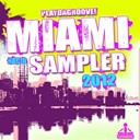 Dani Vars / David Myerz / Elsa Del Mar / Jason Rivas / Team D'luxe - Playdagroove! miami radio sampler 2012