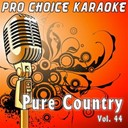 Pro Choice Karaoke - Pure country, vol. 44 (the greatest country karaoke hits)