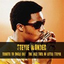 Stevie Wonder - Tribute to uncle ray / the jazz soul of little stevie