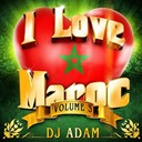 Aabidat Erma / Abdelhak / Amir Asmar / Bnat Chark / Daoudi / Dj Adam / El Botola Chaabia / Filali / Hakim / Hassan Dikouk / Moustafa Bourgogne / Nabila / Ramazo / Sawamit / Senhaji / Senhajia / Simo Senhaji / Star Casa / Zahira - I love maroc, vol. 3 (23 hits mixed by dj adam)