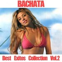 David Fiallo / El Lince / Heavy Rosario / Joselito / Julio Fias / Mariela / Marlenis / Nelson - Bachata collection, vol. 2 (best exitos)