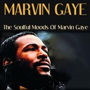 Marvin Gaye - Marvin gaye: the soulful moods of marvin gaye