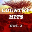 Don Gibson / Doug Stone / Exile / Freddy Fender / Holly Dune / Janie Fricke / Jeanne Pruett / Juice Newton / Mark Wills / Merle Haggard / Mickey Gilley / Pam Tillis / Restless Heart / T G Sheppard / T. Graham Brown - Country hits, vol. 1
