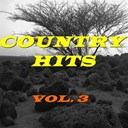 Asleep At The Wheel / B.j. Thomas / Billie Jo Spears / David Houston / Don Gibson / Donna Fargo / Exile / Faron Young / Jack Greene / Jeanne Pruett / Kenny Rogers / Kitty Wells / Lacy J. Dalton / Lynn Anderson / Mark Wills / Merle Haggard / Patsy Cline / Tanya Tucker / Waylon Jennings - Country hits, vol. 3