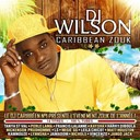 C-Sheyn / Dj Wilson / Francis Lalanne / Harry Diboula / Jack Jango / Kamnouze / Kaysha / Leila Chicot / Little Big Man / Matt Houston / Meguy / Misi&eacute; Gg / Nickenson Prudhomme / Perle Lama / Tanya Saint Val / Val&eacute;rie Delgado / Vincenzo - Caribbean zouk, vol. 2