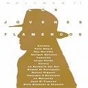 Aurora / Enrique Morente / Joan Albert Amargos, Carles Benavent / Jorge Pardo / José El Francés / Ketama / La Barbería Del Sur / La Macanita / Pata Negra / Rafael Riqueni / Ramón El Portugués / Ray Heredia / Tomatito / Willi Giménez & Chanela - Los jóvenes flamencos, vol. 2