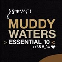 Muddy Waters - Essential 10: muddy waters