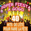 C. Wyllis Orchestra / Pop Dance Orchestra / Pop Soleil Orchestra / The Disco Orchestra / The Top Orchestra - Super fiesta à gogo (40 hits de l'été pour faire la fête)