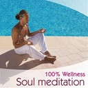 Ayuthya / Frederick Rousseau / Gioari / Laurent Dury / Philippe Bestion / Vincent Bruley - 100 % Wellness - Soul Meditation