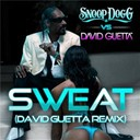 Snoop Dogg - Sweat (snoop dogg vs. david guetta) (remix)