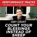 Amy Grant - Count your blessings instead of sheep (performance tracks) - ep