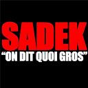 Sadek - On dit quoi gros