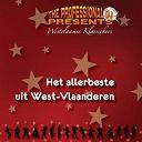 The Professional Dj - Het allerbeste uit west-vlaanderen, vol. 1 (westvlaamse klassiekers)