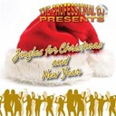 The Professional Dj - Jingles for christmas and new year