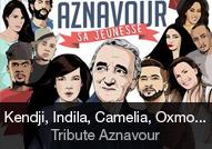 Compilation - album Aznavour, sa jeunesse